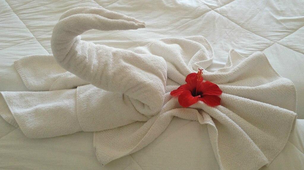 housekeeping-1024x571.jpg