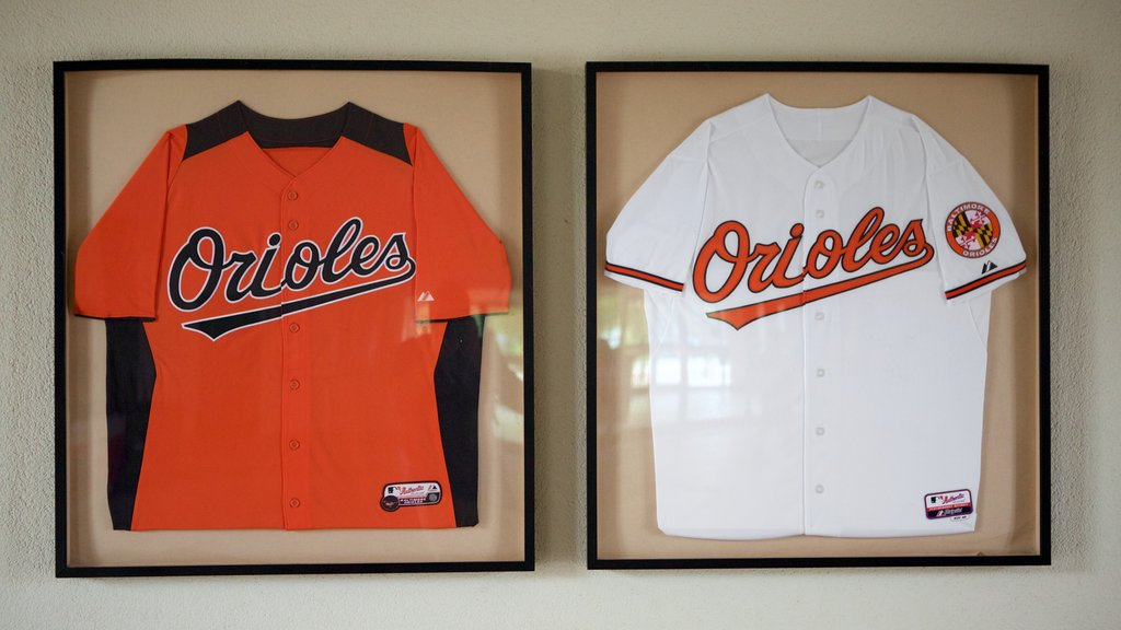 Oriole Park at Camden Yards featuring interior views