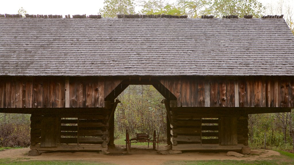 Cades Cove which includes heritage architecture, forest scenes and tranquil scenes