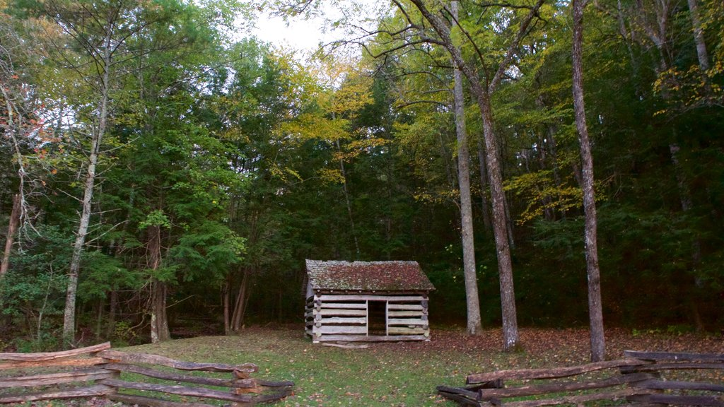 Cades Cove showing heritage architecture, a house and forest scenes