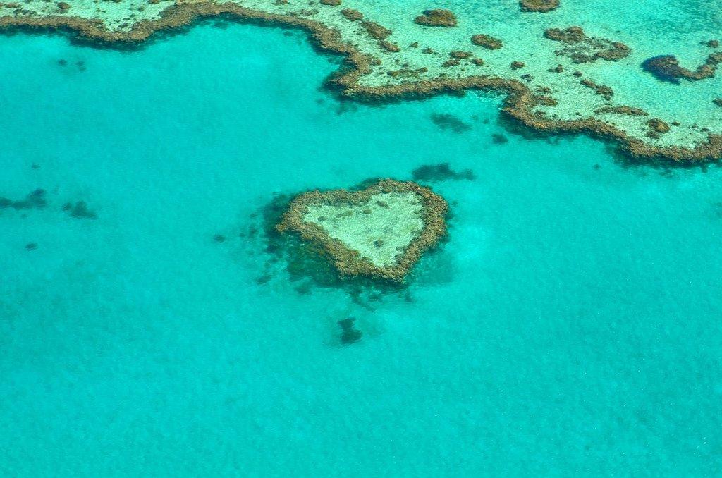 great-barrier-reef-1024x678.jpg