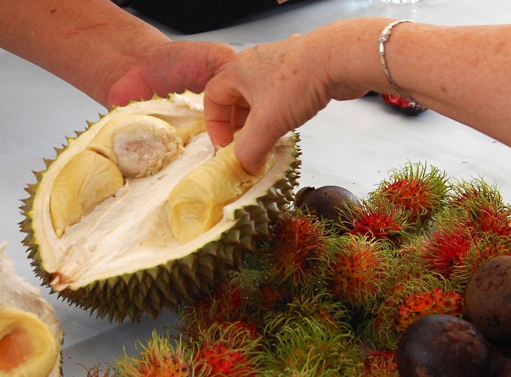 durian-essen-1024x755.jpg