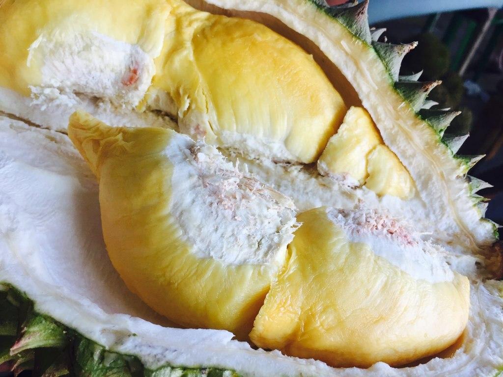 durianfrucht-1024x768.jpg