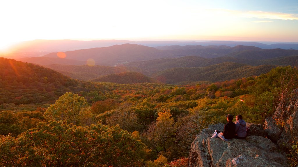 Shenandoah National Park which includes mountains, tranquil scenes and forests