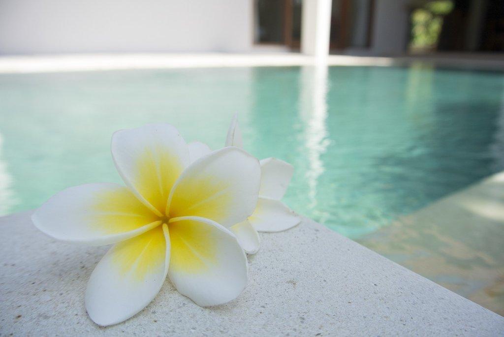 pool-wellness-1024x685.jpg