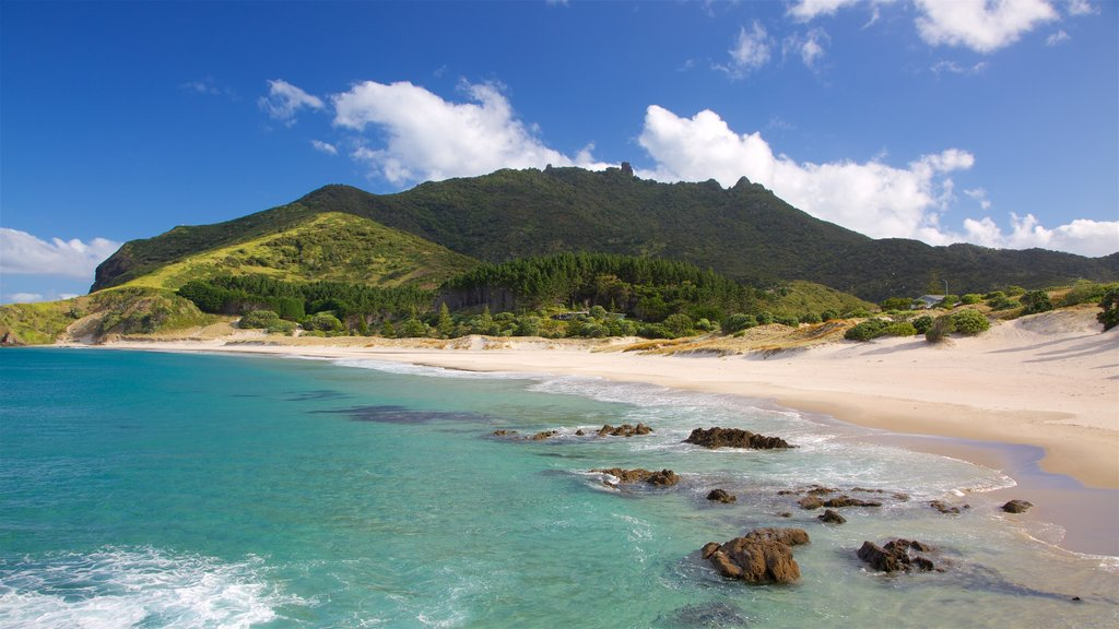 Ocean Beach showing a bay or harbor, mountains and a sandy beach