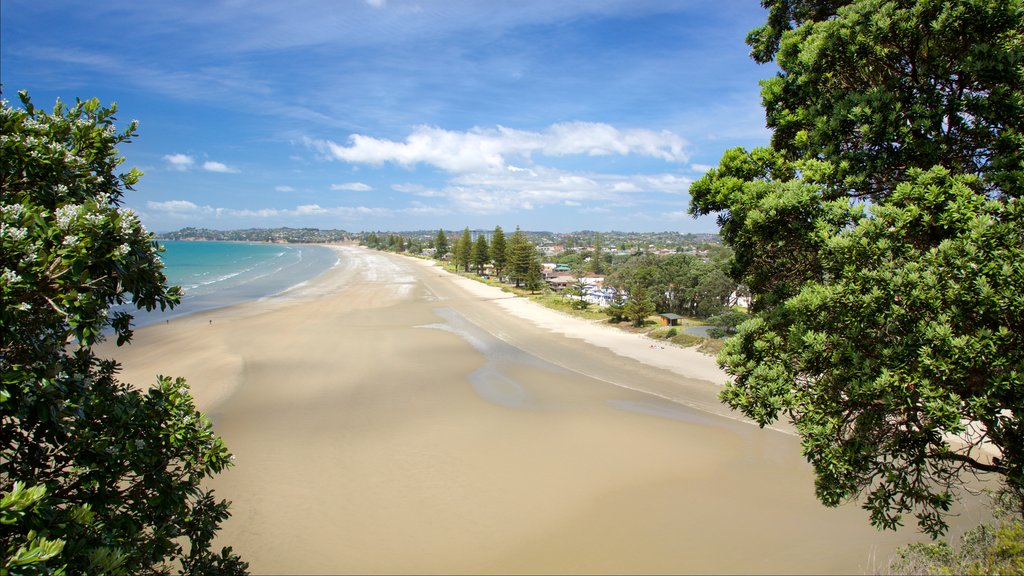 Orewa showing a sandy beach and a bay or harbor