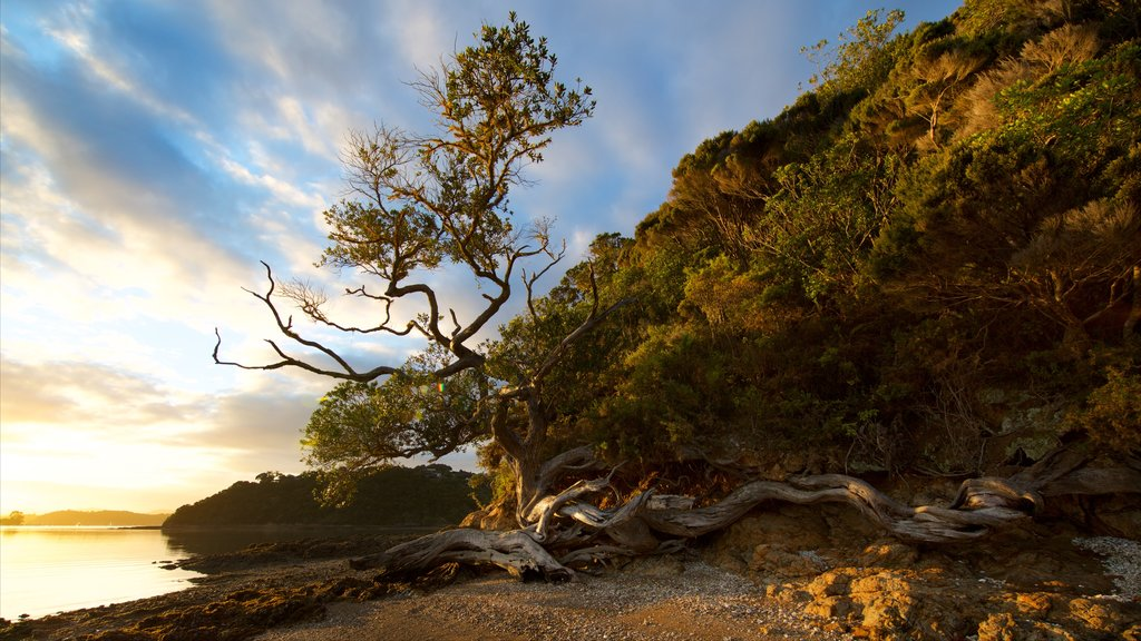 Bay of Islands showing a sunset, general coastal views and rugged coastline