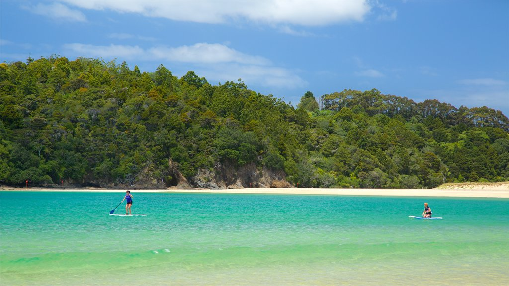 Tutukaka showing watersports, a beach and a bay or harbor