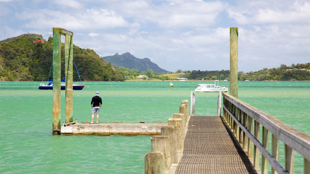 Whangarei Heads showing a bay or harbor as well as an individual male