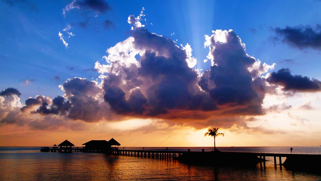 Maldives which includes a sunset and general coastal views