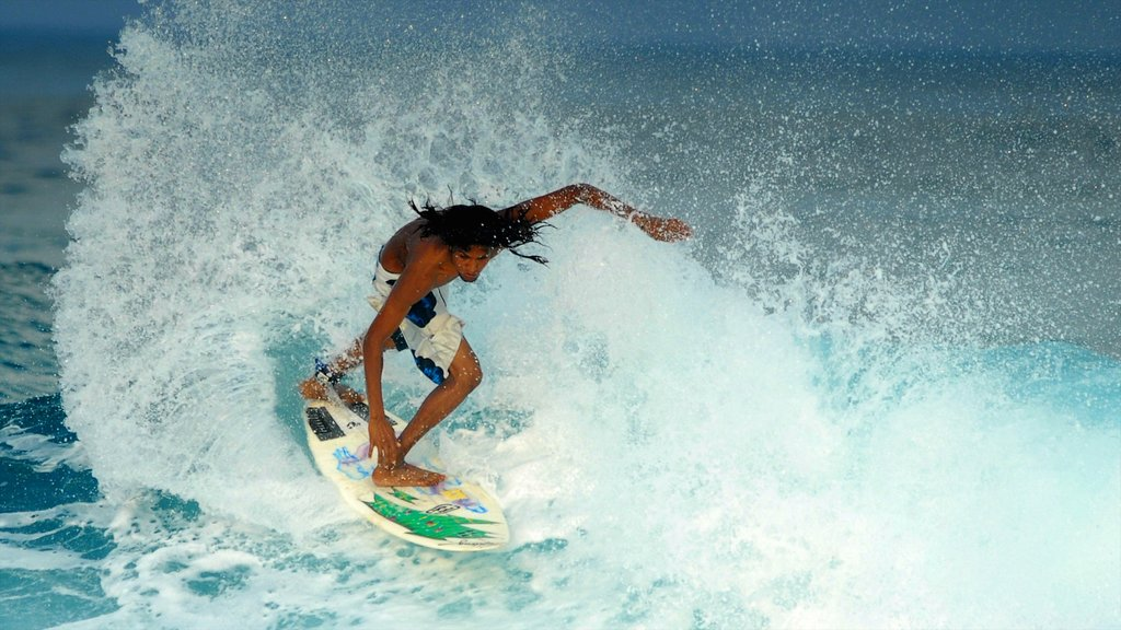 Maldives featuring surfing as well as an individual male