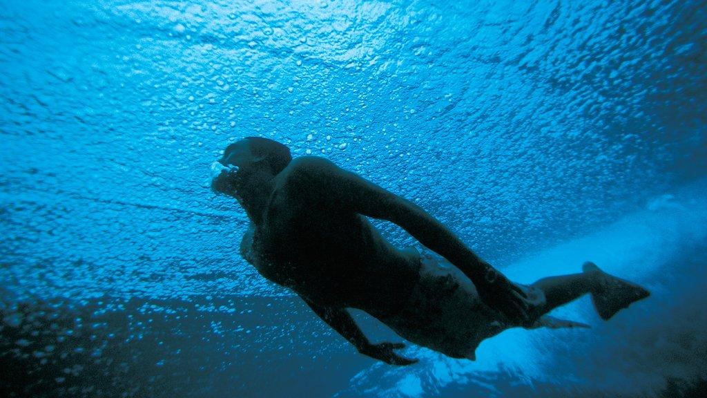 Maldives showing snorkeling