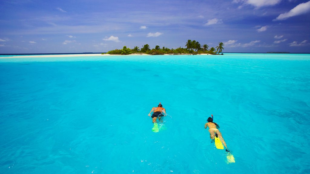 Maldives showing island images, a bay or harbor and snorkeling