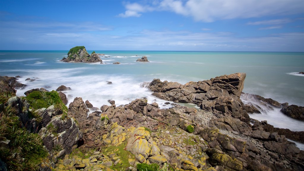 Tauranga Bay Seal Colony featuring rocky coastline and a bay or harbor