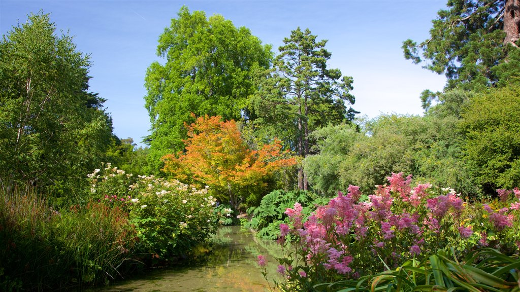 Christchurch Botanic Gardens which includes a garden