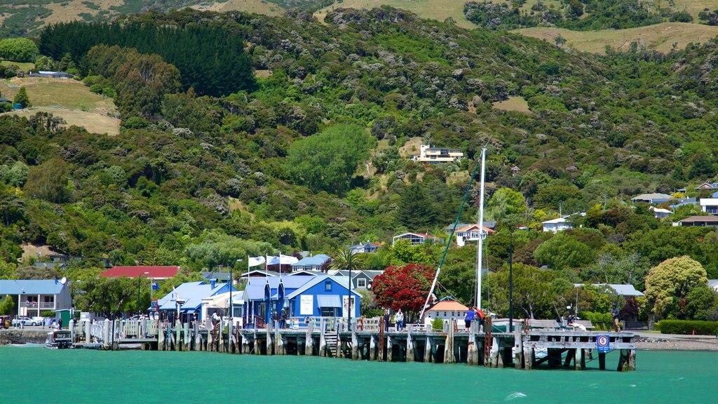Akaroa Wharf featuring general coastal views and a coastal town
