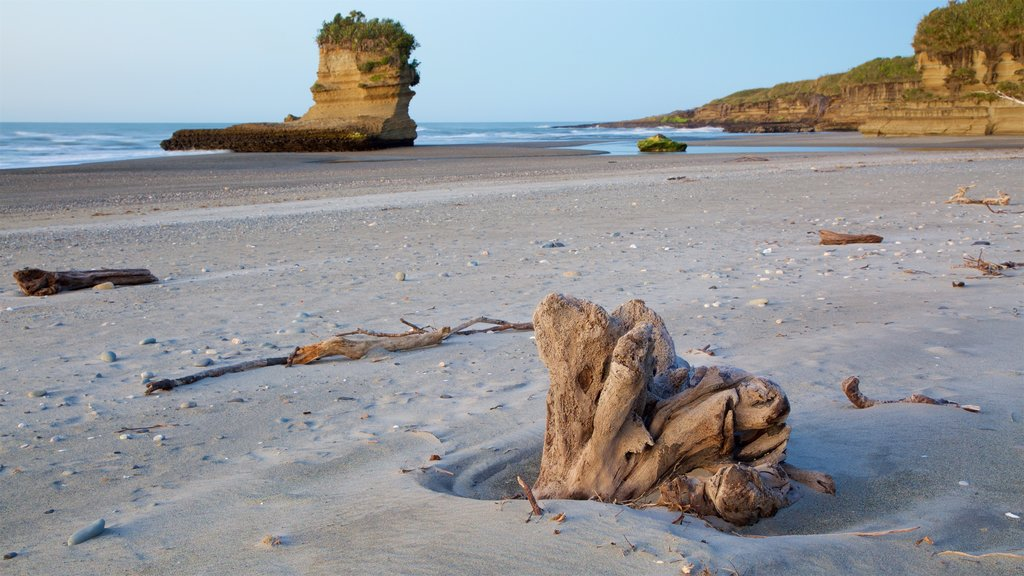 West Coast New Zealand showing rugged coastline and a sandy beach