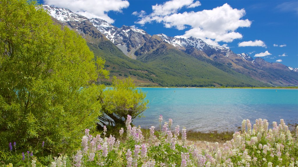 Glenorchy showing wildflowers, a pebble beach and a lake or waterhole