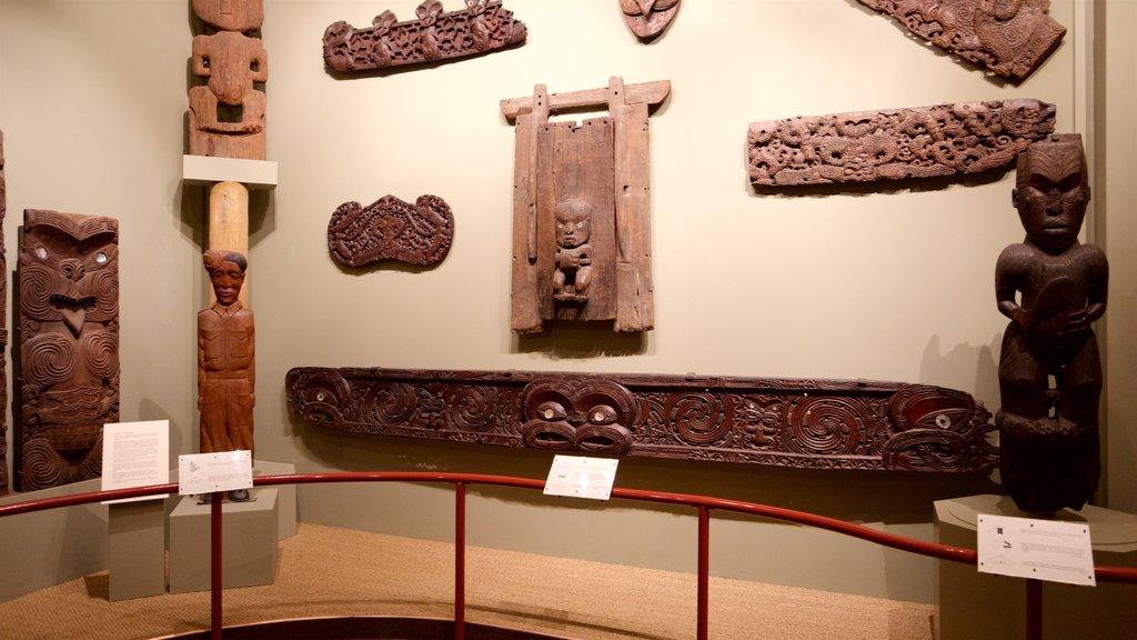 Canterbury Museum que incluye cultura indígena y vistas interiores