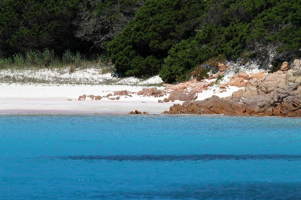 1620px-La_spiaggia_rosa_di_Budelli_-_panoramio_%281%29.jpg?1560332067