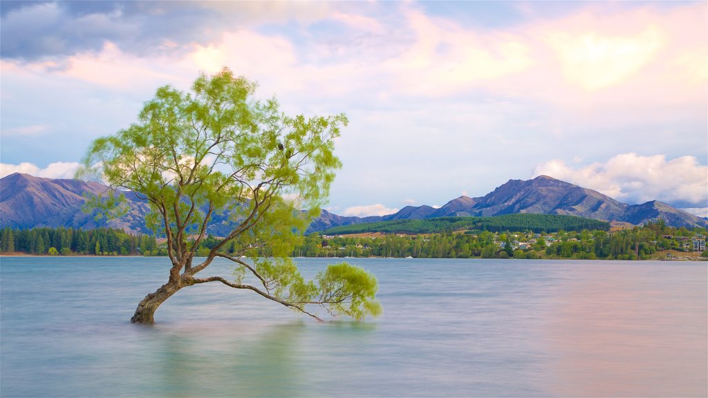 Lake Wanaka mostrando escenas tranquilas, un lago o abrevadero y una puesta de sol
