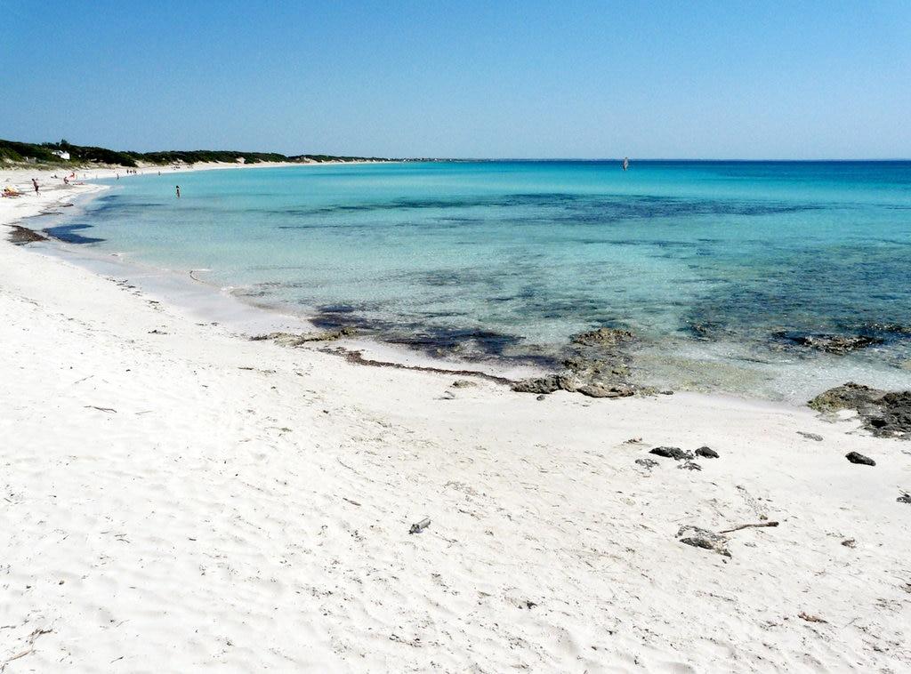 Spiaggia_di_Punta_Prosciutto-2.JPG?1561954112
