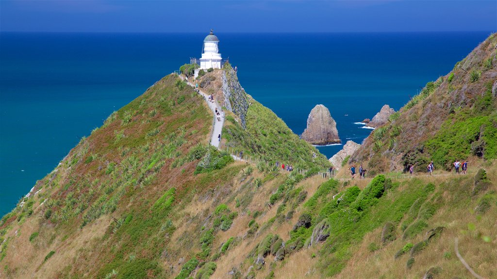 Nugget Point Lighthouse featuring rugged coastline and a lighthouse