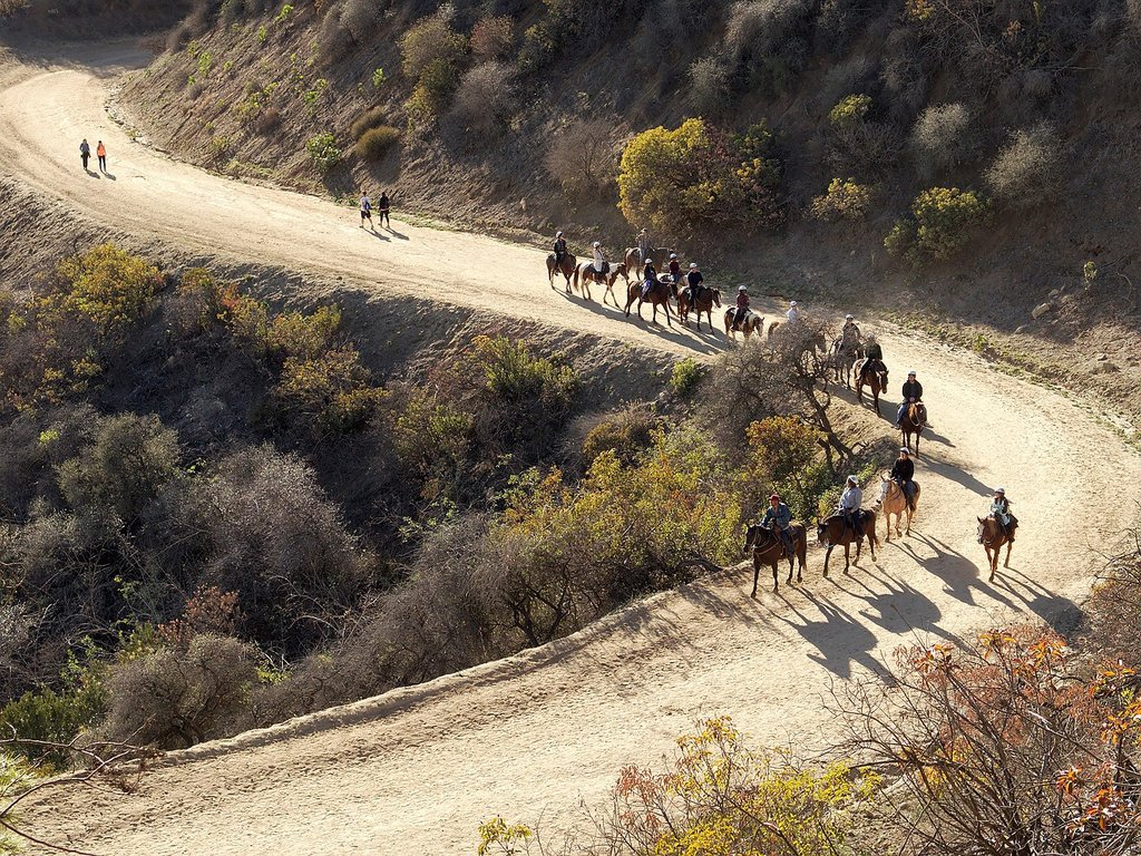 1440px-Equestrian_trail_use_in_Griffith_Park_2015-12-27.jpg?1568815424