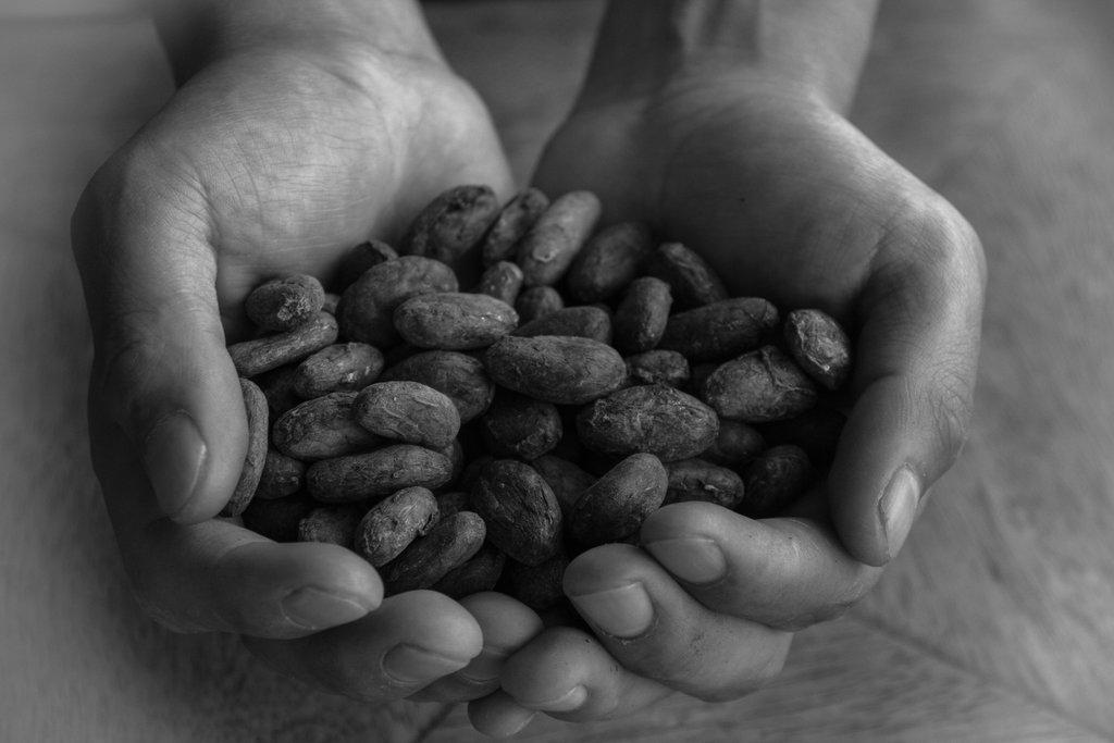 Chocolat-Perou-Photo-Dottydot.jpg?1543145027