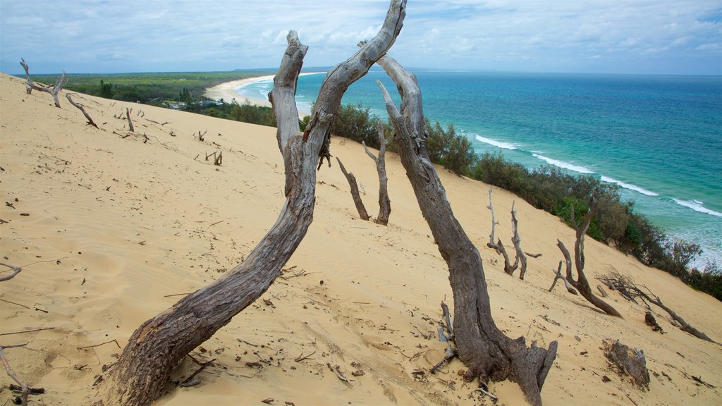 Rainbow Beach showing general coastal views and a sandy beach