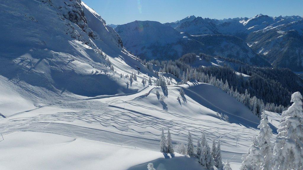 Ski_Suisse_CC0.jpg?1543155835