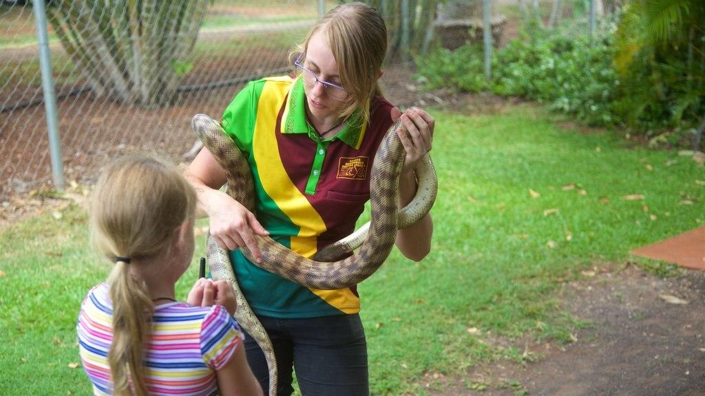 Childers ofreciendo animales peligrosos y animales del zoológico y también un niño