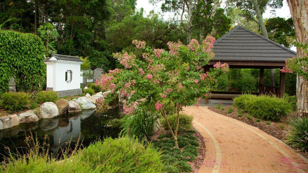 Jardín botánico de la bahía de Hervey ofreciendo un jardín