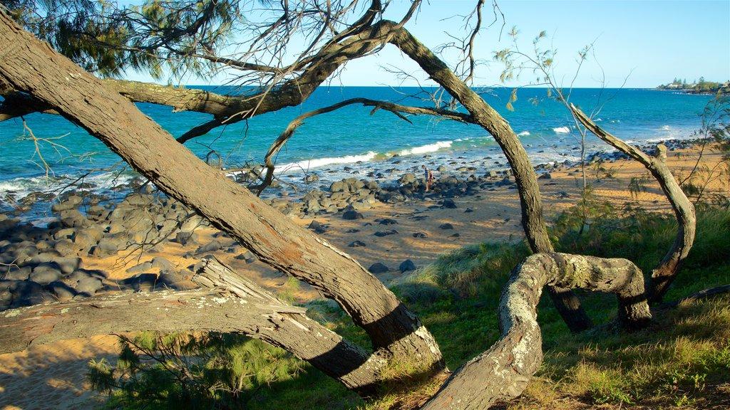 Kelly\'s Beach