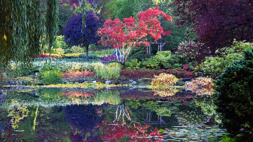 Butchart Gardens which includes a pond and a garden