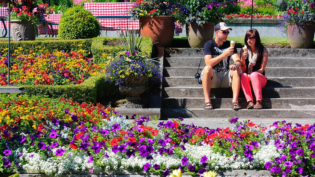 Butchart Gardens showing a garden as well as a couple