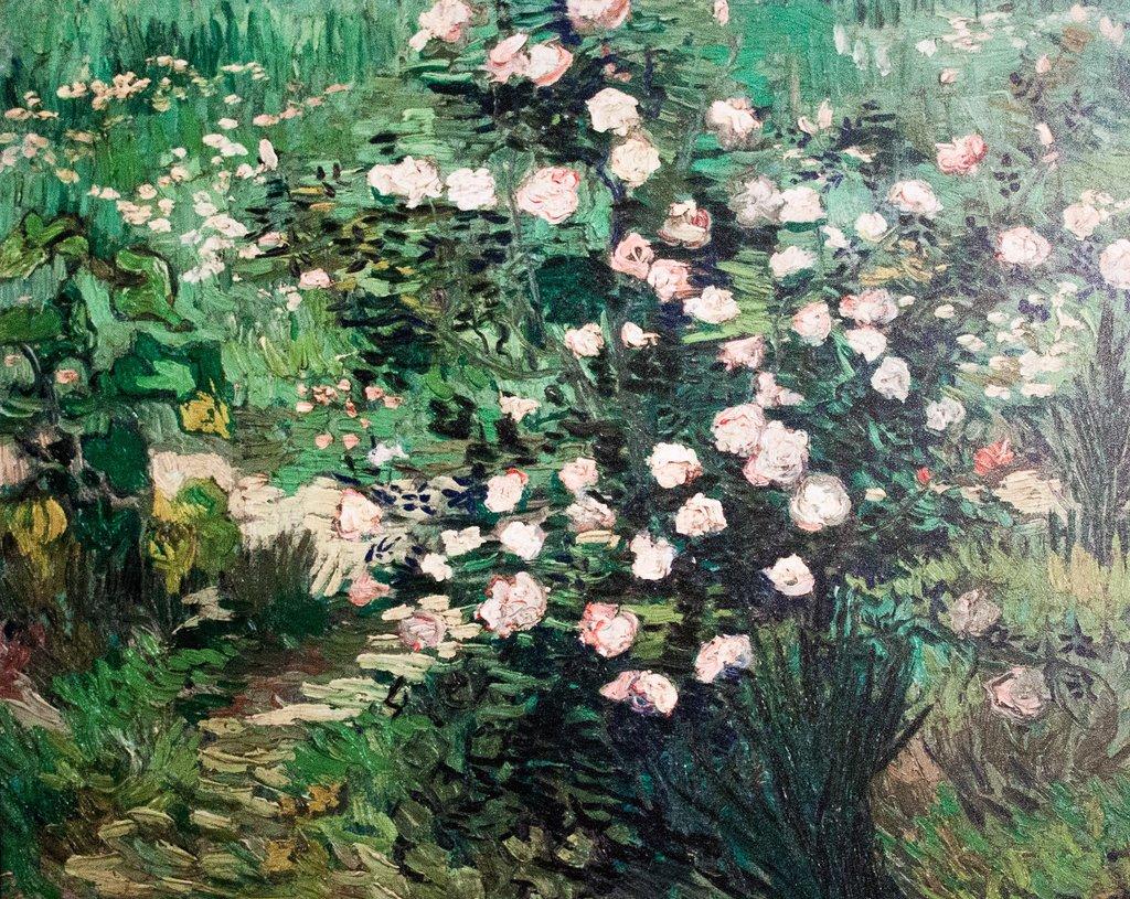 rosebush.jpg?1549304339