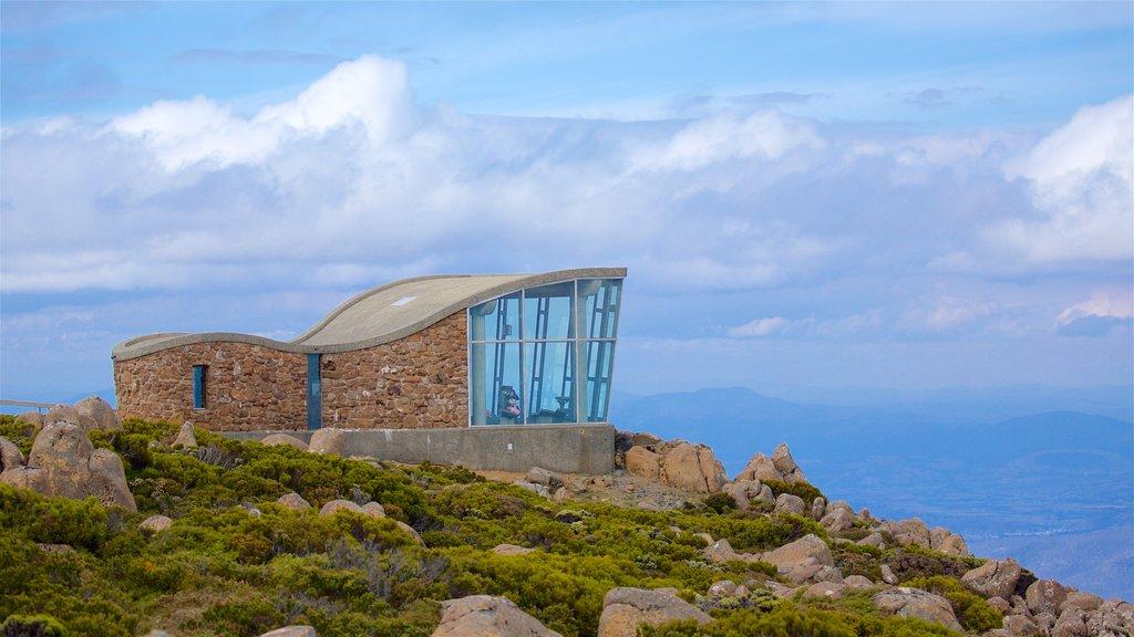 Mt. Wellington