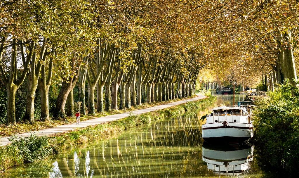 tree-forest-boat-flower-parking-river-854474-pxhere.com.jpg?1564409257