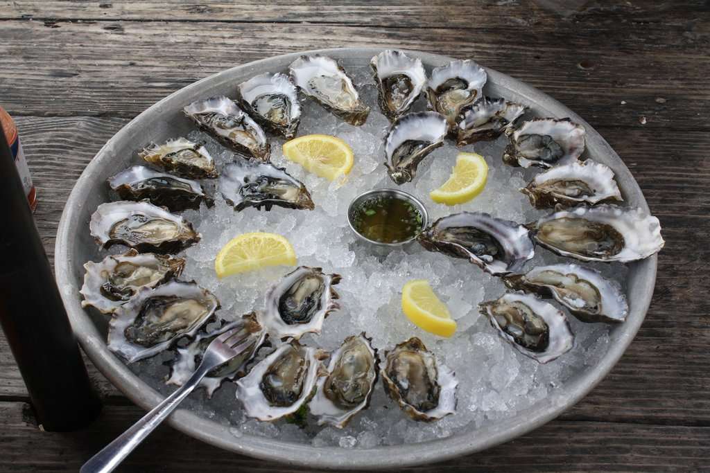 oysters-734484_1920.jpg?1570637463