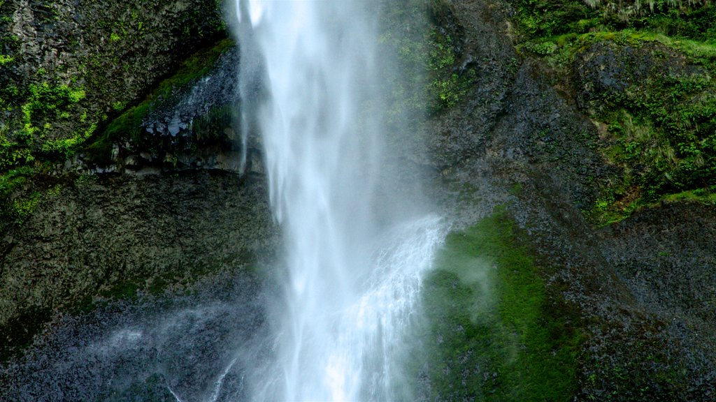 Cascadas de Multnomah que incluye una catarata