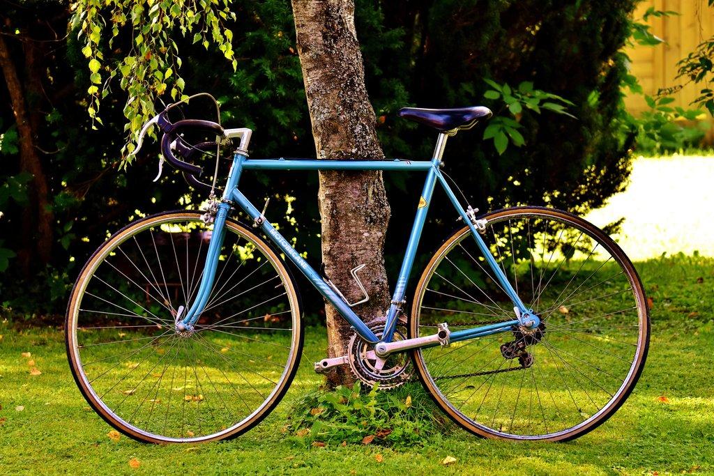 bicycle-2293976.jpg?1573227867
