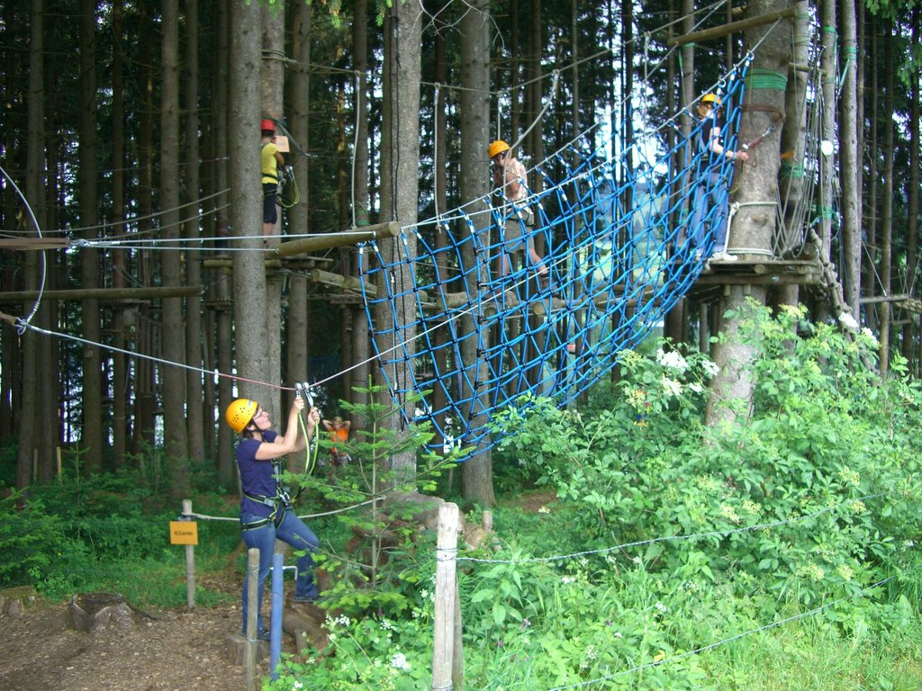 high-ropes-course-246113_1920.jpg?1573558629