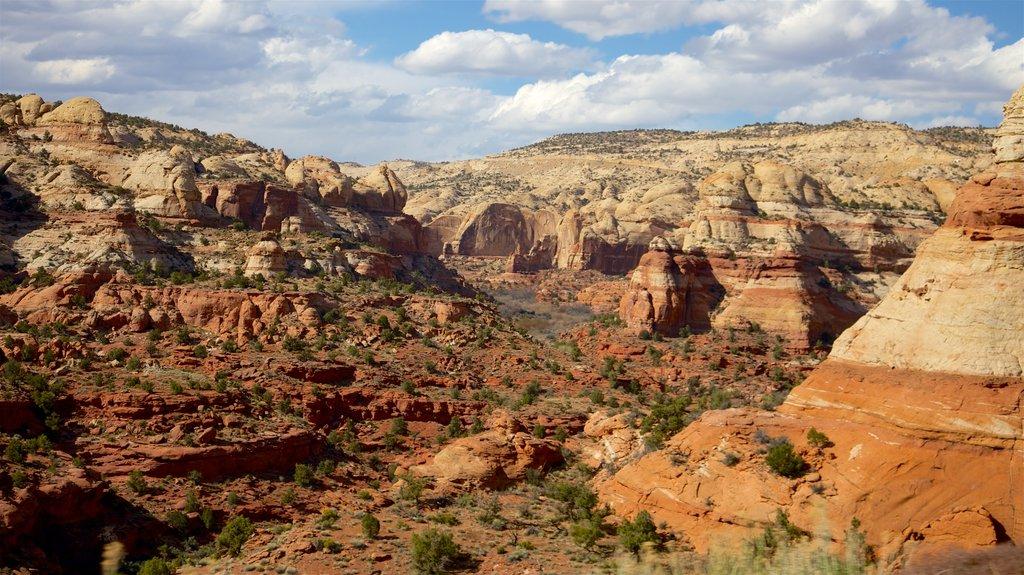 Gran Cuenca ofreciendo un barranco o cañón y vistas al desierto