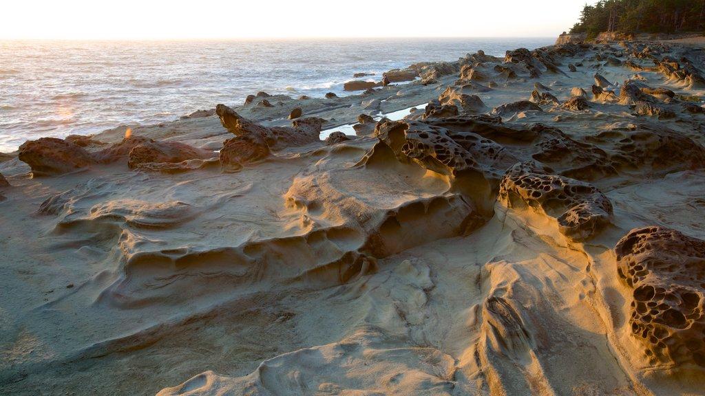Parque estatal Shore Acres que incluye costa rocosa, una puesta de sol y una bahía o puerto