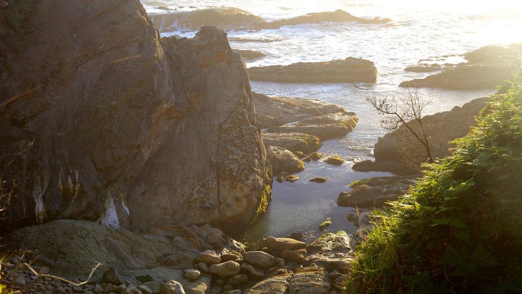 Parque estatal Shore Acres mostrando una puesta de sol, costa escarpada y una bahía o puerto