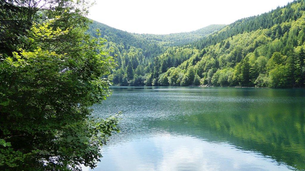 Lac_du_Grand_Ballon_Alsace.jpg?1560865444