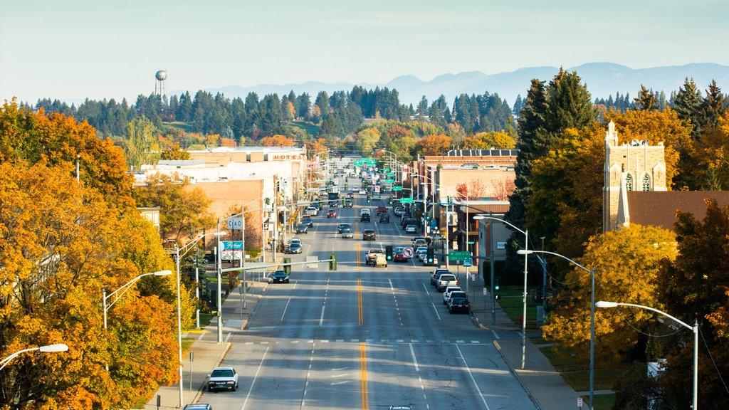 Kalispell featuring street scenes