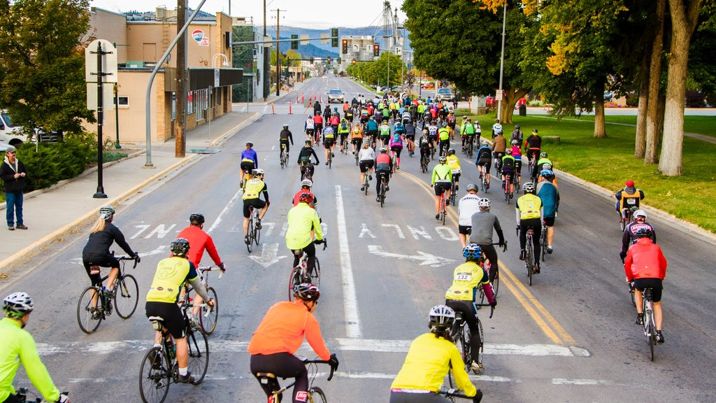 Kalispell which includes road cycling as well as a large group of people
